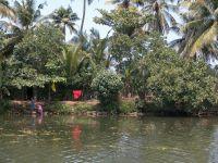backwaters-003