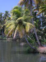 backwaters-005