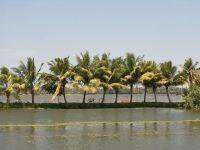 backwaters-006