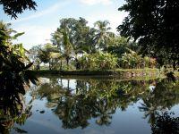 backwaters-013