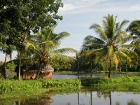 backwaters-014
