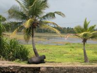 backwaters-018