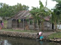 backwaters-019