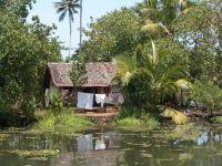 backwaters-119