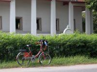 ayutthaya-008